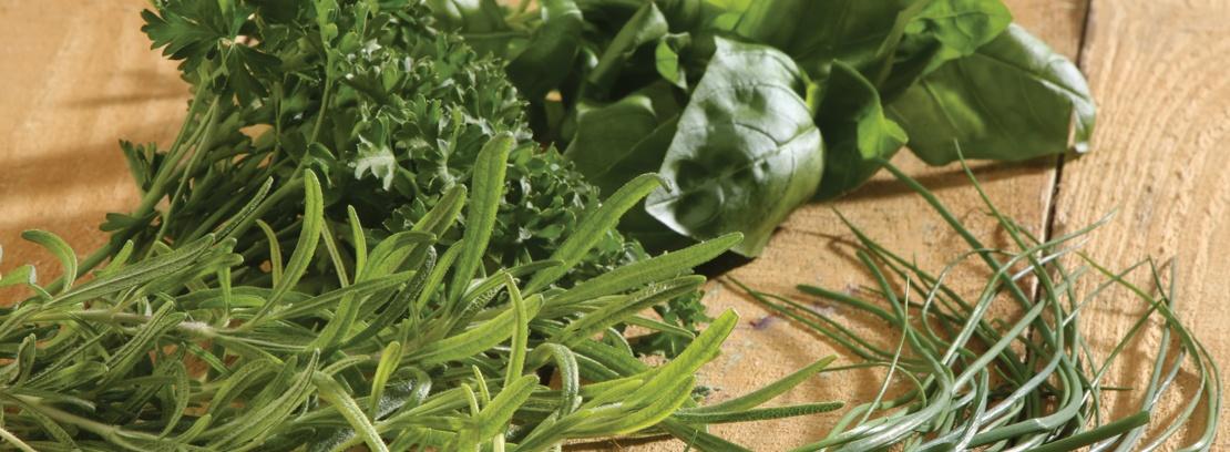 Assorted fresh herbs on wood.